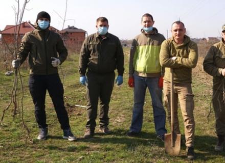 Біля Ужгорода висадили кілометрову алею червоного дуба
