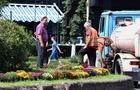 В Ужгороді почали висаджувати осінні квіти