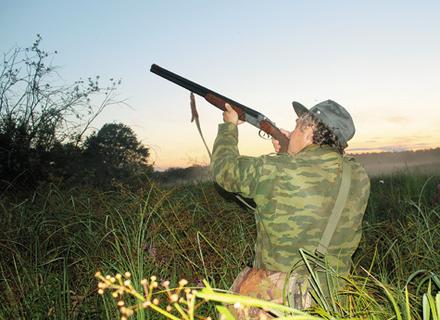 Закарпатські лісівники повідомили про нові штрафи за незаконне полювання