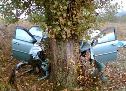 На Берегівщині ВАЗ вдарився у дерево. Семеро постраждалих