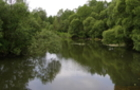 На Ужгородщині потонув 39-річний чоловік
