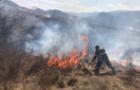 Жителів Іршавщини та Міжгірщини притягнуто до відповідальності за спалювання сухостою