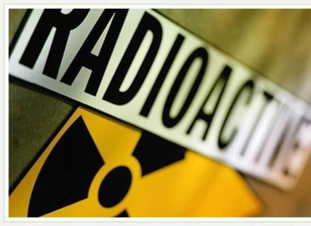 Лісівники: Через гниття сміття в закарпатських лісах утворюється радіація