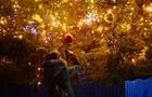 Рейтинг: Яка Новорічна ялинка найкраща в Закарпатті (ФОТО)