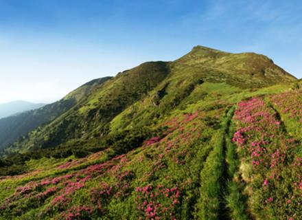 ВІДЕО одного походу в гори в Закарпатті, яке надихає