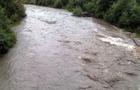 На Воловеччині учень п'ятого класу впав у повноводну річку і зник