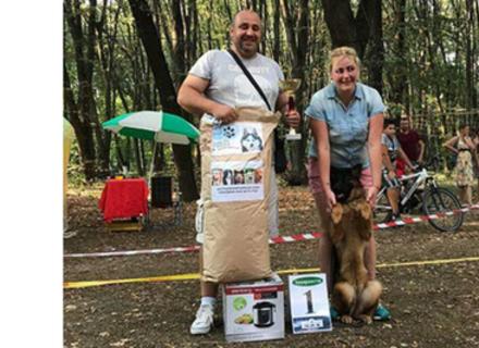 В Ужгороді на День Незалежності відбудеться виставка собак
