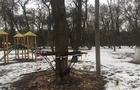 В Ужгороді розвалився будиночок екс-мера Ратушняка. Залишився лише каркас