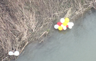 Екологи не реагують: Святкові гумові повітряні кульки продовжують забруднювати природу Закарпаття