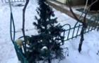 Через загоряння ялинки, сталася пожежа у багатоквартирному будинку Мукачева