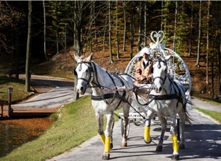 Один турист в Закарпатті в середньому офіційно залишає 1000 гривень