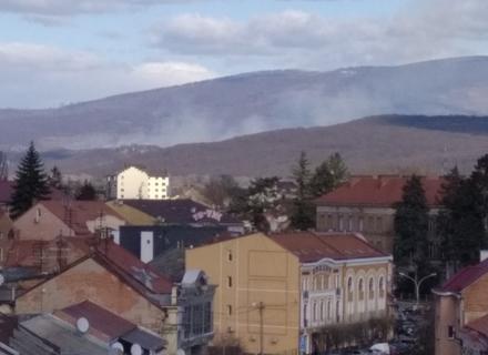 Біля Ужгорода горить  ліс