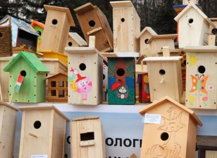 На День Ужгорода лісівники навчатимуть діток виготовляти годівнички для птахів