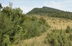 На Закарпатті лісівники відкривають туристичний піший гірський маршрут з-під Ужгорода і до Великоберезнянщини