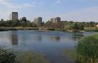 """В Ужгороді вирішували, що робити з парком на """"Кірпічці"""""""