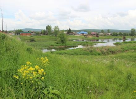 На Мукачівщині в полі знайшли тіло 18-річного хлопця