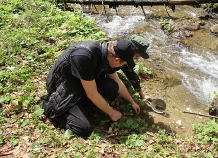 Компанія, яка будує ГЕС, задобрює закарпатців зарибленням річок