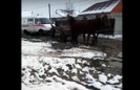 Курйоз: На Мукачівщині автомобіль швидкої допомоги тягнули кіньми (ВІДЕО)
