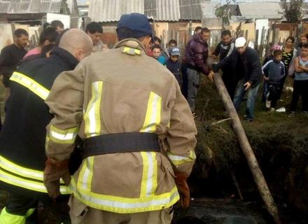 Рятувальники витягли коня з вигрібної ями