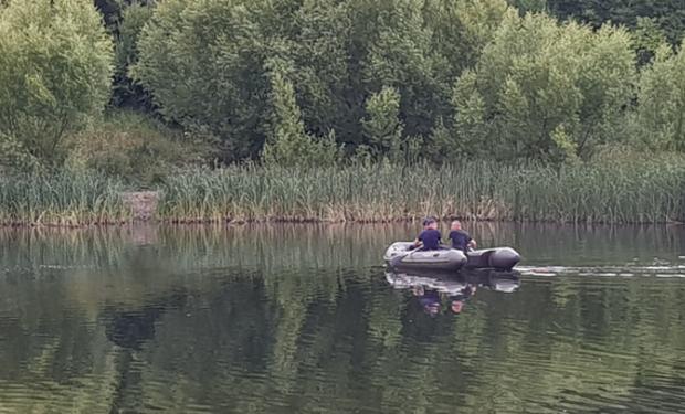 Лебедя на озері Кірпічка в Ужгороді вдалося врятувати