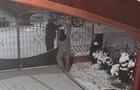 У Чопі крадії двічі за ніч пограбували один і той же будинок (ВІДЕО)