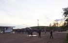 Близько 300 закарпатців зустрічали Благодатний  вогонь з Єрусалиму в аеропорту Ужгорода