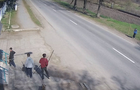 Відео дня: Підлітки в Перечині крадуть саджанці молодих дерев