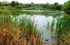 В Ужгороді на озері знайшли потопельника