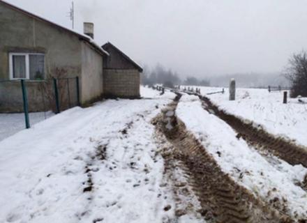 На Мукачівщині люди перекрили дорогу лісовозам, які нищать дорогу