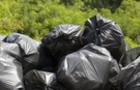 Коли ініціативність карається: Волонтерів, які прибрали Шахтинський ліс в Ужгороді, оштрафували (ВІДЕО)
