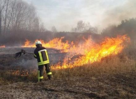 Білецький: За минулий рік на Закарпатті вигоріло 510 гектарів землі