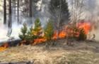 На Закарпатті 50 чоловік гасили пожежу в лісі національного парку Зачарований край