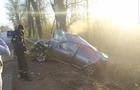 На Іршавщині автомобіль вдарився в дерево. Загинув пасажир