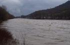 На Виноградівщині у річці Тиса рятувальники шукали потопельника