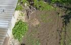 У Виноградові активісти з дрона перевірили територію двору виховательки дитсадка, яка є свідком у справі зникнення людини