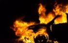 На Воловеччині згорів автомобіль