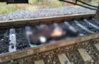 На Хустщині чоловіка збив потяг