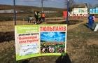 Голландія взяла під опіку село на Ужгородщині. Тут висадять 50 тисяч тюльпанів