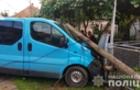 На Свалявщині п'яний водій на мікроавтобусі ледь не вбив пішохода, а потім зніс електроопору (ВІДЕО)