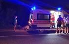 У результаті нічної ДТП на Мукачівщині загинув кінь