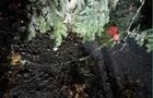 На Перечинщині невідомі підпалили Новорічну ялинку