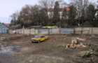 У центрі Ужгорода біля пошти вирізали дерева