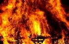 В Ужгороді згорів закинутий будинок
