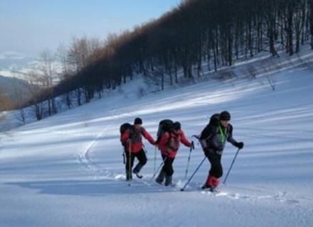 Туристку з Дніпра, яка загубилася вчора в горах Закарпаття, знайшли живою