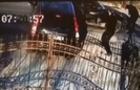 Камери відеоспостереження зафіксували напад зі стріляниною на валютника з Берегівщини (ВІДЕО)