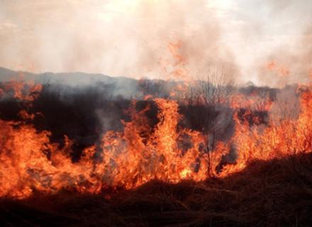 На Хустщині чоловік спалював траву і ледь не згорів сам