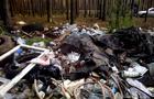 В Ужгороді скрізь несанкціоновані звалища побутових та будівельних відходів (ВІДЕО)