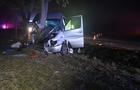 В Угорщині мікроавтобус із закарпатцями врізався в дерево: десять постраждалих