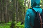 На Тячівщині двоє підлітків заблукали і ночували в лісі
