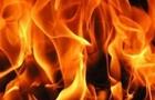 На Воловеччині на сходах будівлі однієї з сільрад розлили та підпалили горючу рідину